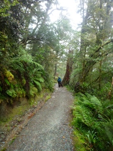 day3routeburn